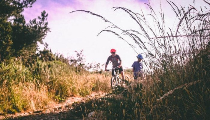 Mountainbike singletrack